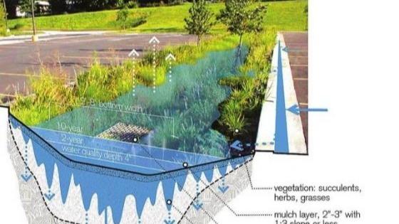 Monmouth公园为雨水管理系统